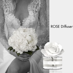 Linea Wedding Rose