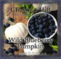 Wild Blueberry Punpkin